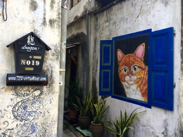Cats down alleyways