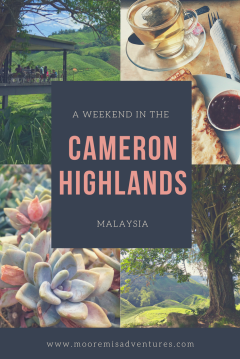 Cameron Highlands, Malaysia | by Moore Misadventures