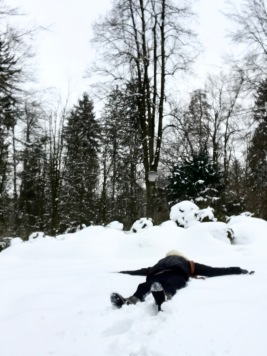 Snow plop