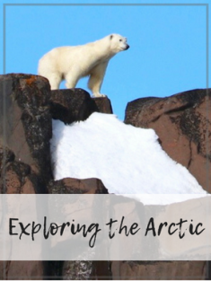 Exploring the Arctic