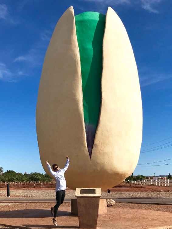 World's Giant Pistachio